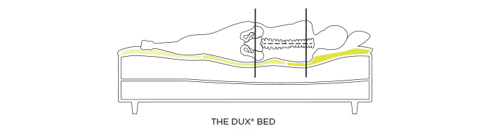 Graphic of The DUX bed